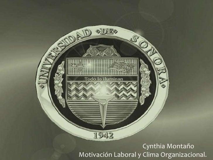 Cynthia Montaño Motivación Laboral y Clima Organizacional.