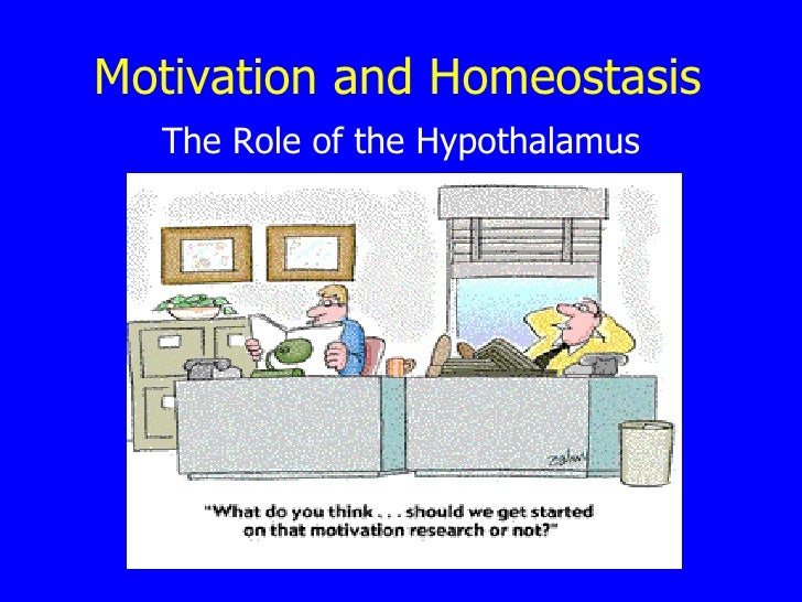 Motivation and Homeostasis The Role of the Hypothalamus