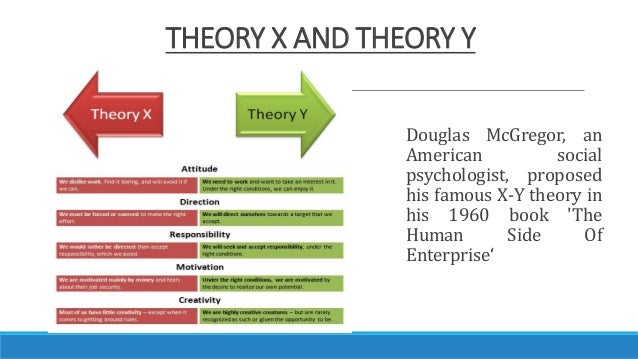 management theory x y and z