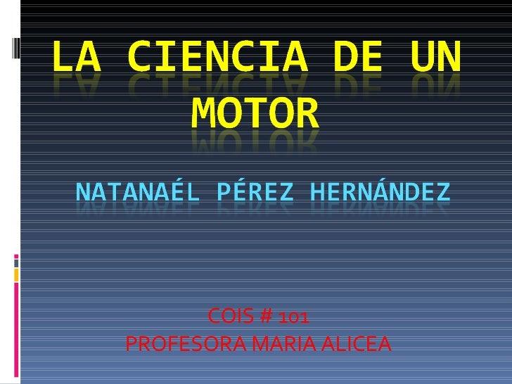 Motor De Gasolina 1211640495109442 8