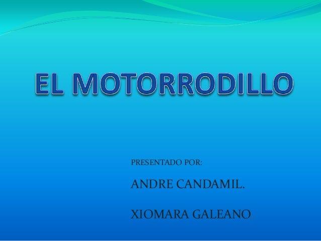 PRESENTADO POR:ANDRE CANDAMIL.XIOMARA GALEANO.