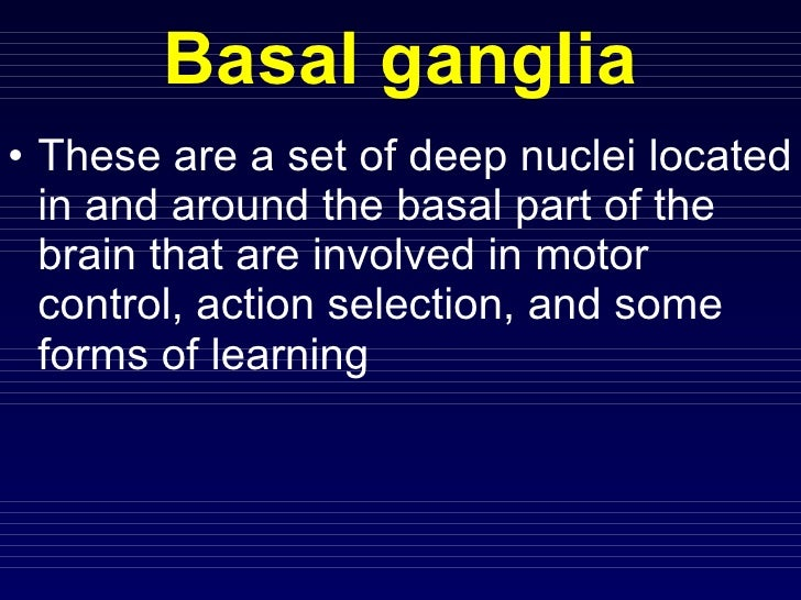 Motor system4 basal ganglia undergraduates