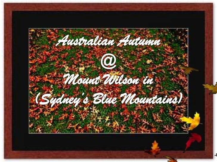 Australian Autumn<br />@<br />Mount Wilson in<br />(Sydney's Blue Mountains)<br />