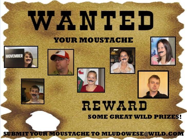 Moustache Contest