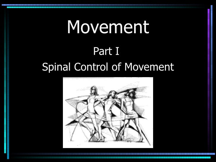 Movement Part I  Spinal Control of Movement