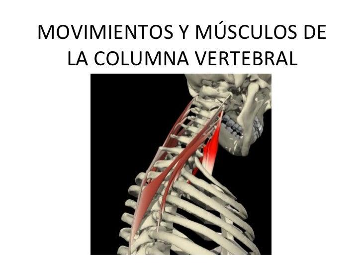 Movimientosymsculosdelacolumnavertebral (1)