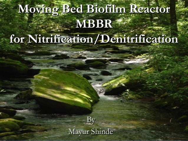 Moving bed biofilm reactor for denitrification corey