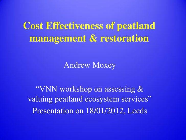 Towards a framework for peatland PES