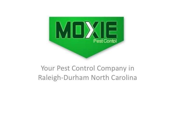 Moxie Pest Control NC