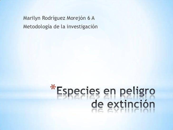 Marilyn Rodríguez Morejón 6 AMetodología de la investigación          *