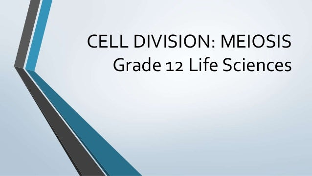 CELL DIVISION: MEIOSIS Grade 12 Life Sciences