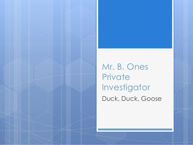 Mr. B. Ones Private Investigator Duck, Duck, Goose