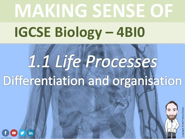 IGCSE Biology Brought to you by mrexham.com Copyright©2015HenryExham MAKING SENSE OF Topic 1.1 Life Processes Differentiat...