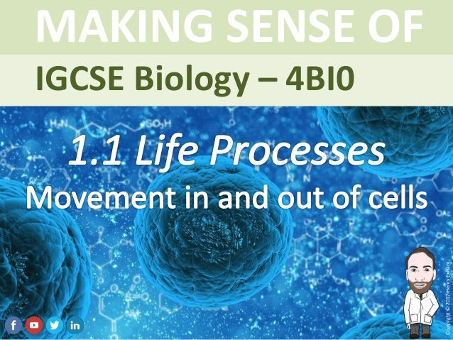 IGCSE Biology Brought to you by mrexham.com Copyright©2015HenryExham MAKING SENSE OF Topic 1.1 Life Processes Movement in ...