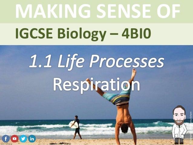 IGCSE Biology Brought to you by mrexham.com Copyright©2015HenryExham MAKING SENSE OF Topic 1.1 Life Processes Respiration