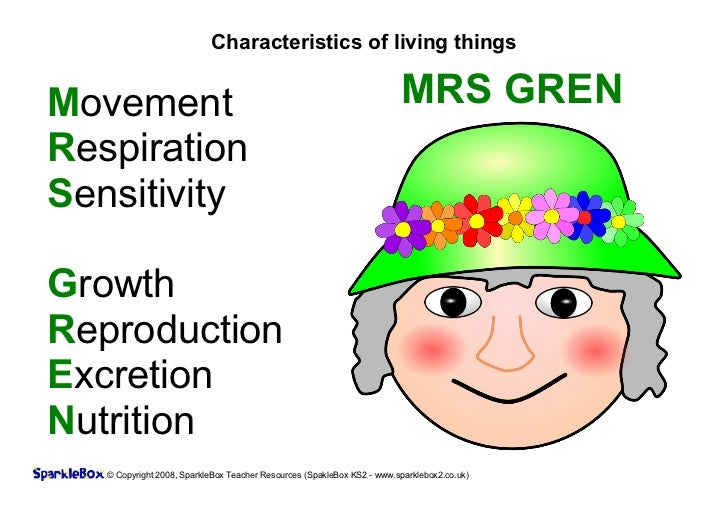 Characteristics of living thingsMovement                                                                MRS GRENRespiratio...