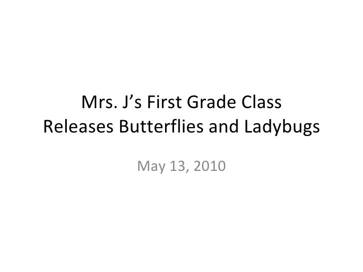 Mrs. J's First Grade Class Releases Butterflies and Ladybugs May 13, 2010