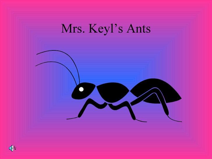 Mrs. Keyl'S Ants