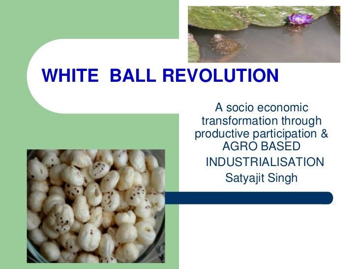 WHITE BALL REVOLUTION                 A socio economic              transformation through             productive particip...