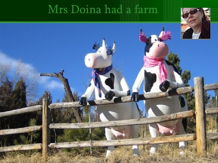 80-Mrs Doina Had A Farm