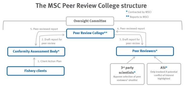 msc application essay