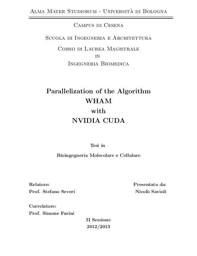 M sc thesis of nicolo' savioli