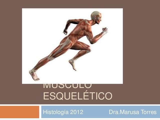 MÚSCULO ESQUELÉTICO Histología 2012 Dra.Marusa Torres