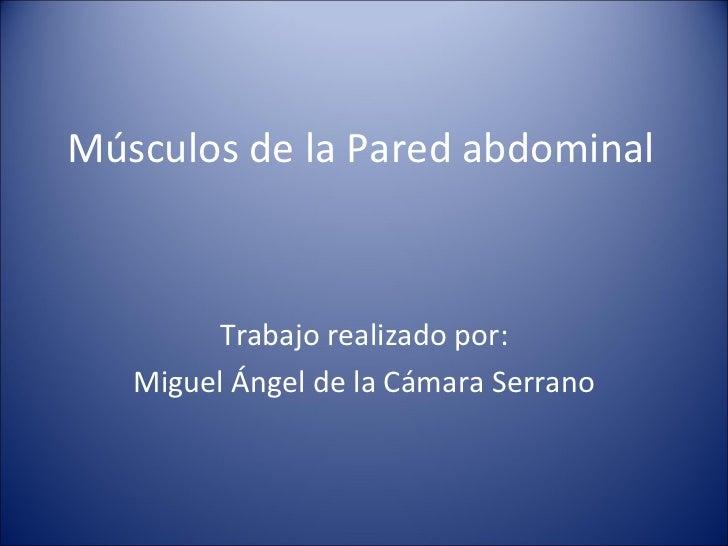 Músculos de la Pared abdominal Trabajo realizado por: Miguel Ángel de la Cámara Serrano