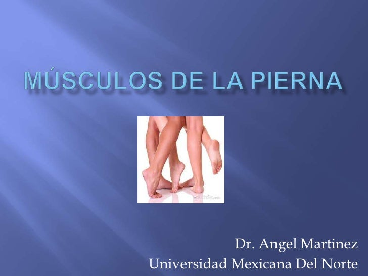 Músculos de la Pierna <br />Dr. Angel Martinez<br />Universidad Mexicana Del Norte<br />