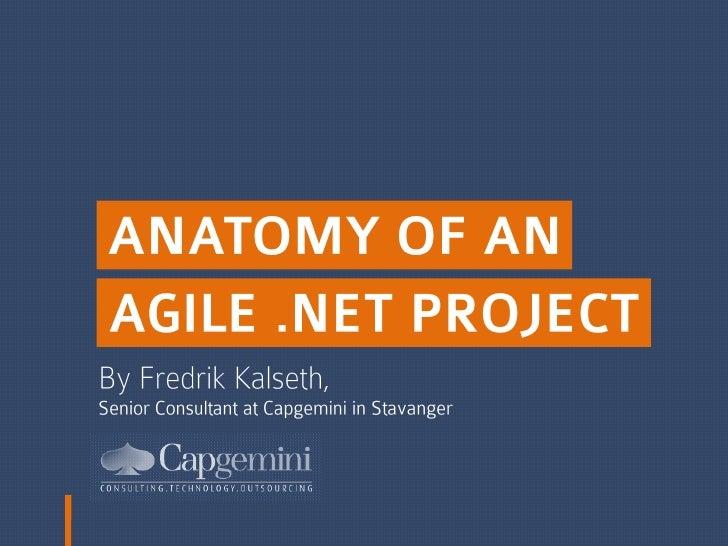 Anatomy Of An Agile .Net Project