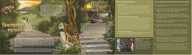 Msgnp brochure marathi