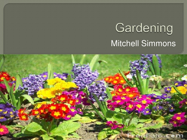 Gardening<br />Mitchell Simmons<br />