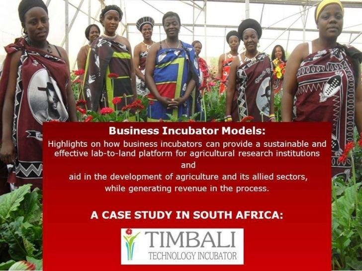 The Timbali model of business incubation