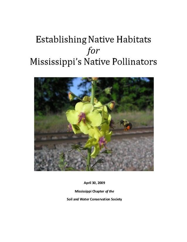 Establishing Native Habitats for Mississippi's Native Pollinators