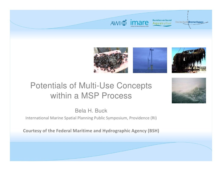 Potentials of Multi-Use Concepts        within a MSP Process                           Bela H. Buck International Marine S...