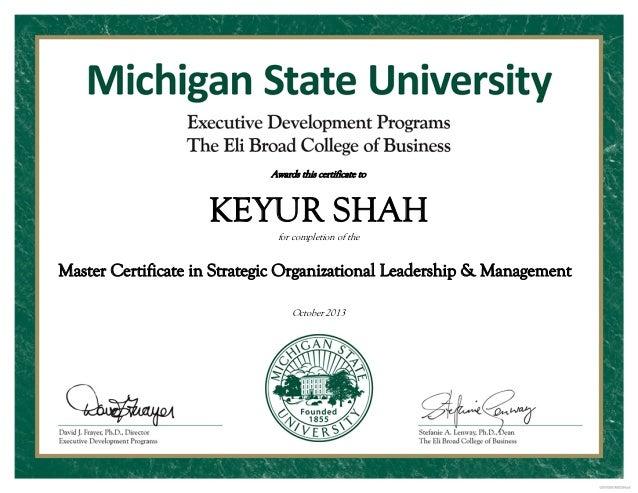 Master Certificate In Strategic Organizational Leadership