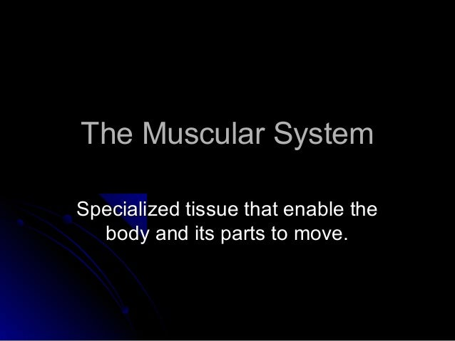 The Muscular SystemThe Muscular System Specialized tissue that enable theSpecialized tissue that enable the body and its p...