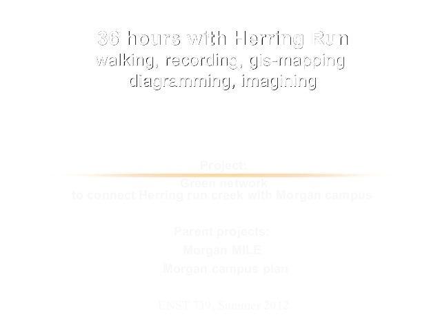Morgan State University. The Herring Run Project