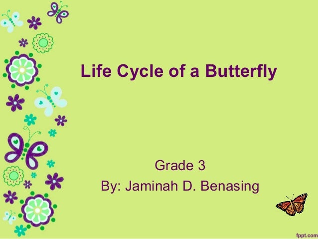 Life Cycle of a Butterfly  Grade 3 By: Jaminah D. Benasing