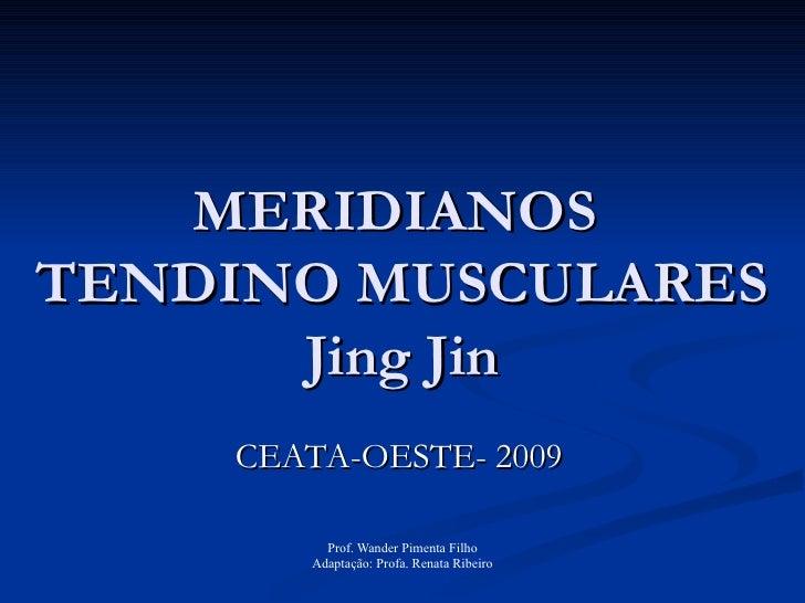 MERIDIANOS  TENDINO MUSCULARES Jing Jin CEATA-OESTE- 2009