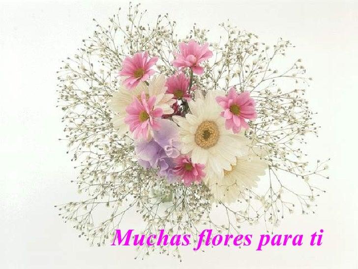 Muchas flores para ti