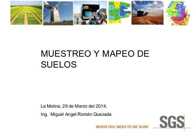 MUESTREO Y MAPEO DE SUELOS La Molina, 29 de Marzo del 2014. Ing. Miguel Angel Román Quezada