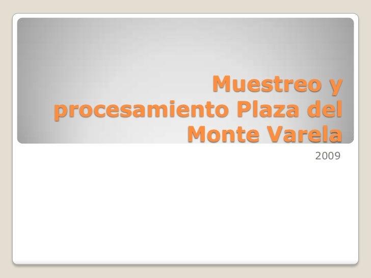 Muestreo y procesamiento Plaza del Monte Varela<br />2009<br />