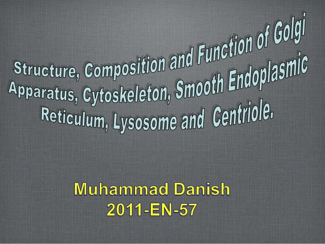 OUTLINE Golgi apparatus Cytoskeleton Smooth Endoplasmic Reticulum Lysosome Centriole