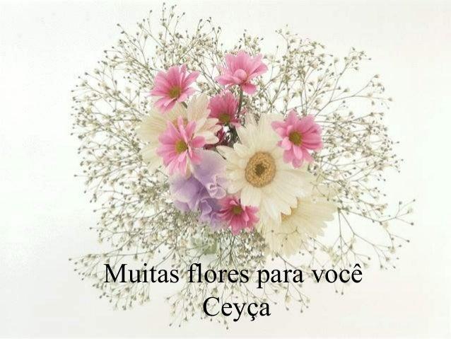 Muitas flores para você Ceyça