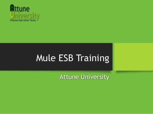 Mule ESB TrainingAttune University