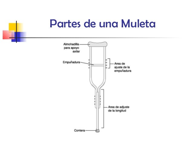 Muletas for Partes de una griferia de ducha