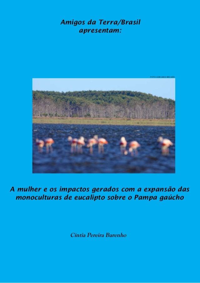 Amigos da Terra/Brasil                 apresentam:                                         FOTO ADRIANO BECKERA mulher e o...