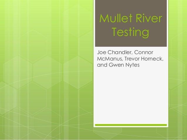 Mullet River Testing Joe Chandler, Connor McManus, Trevor Horneck, and Gwen Nytes