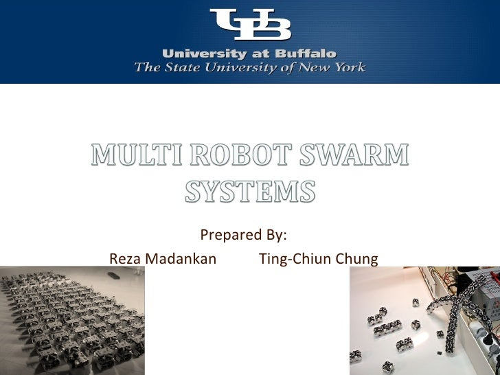 Multi Robot Swarm Systems